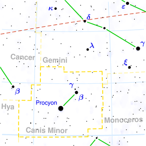 Canis minor